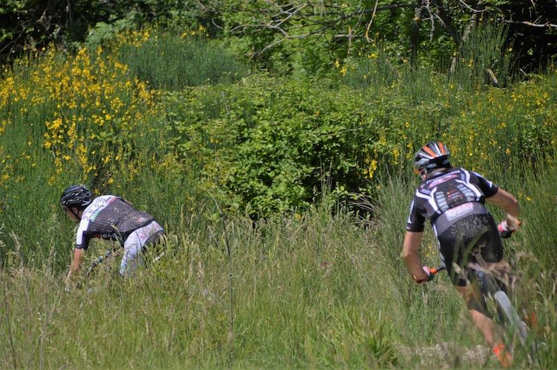 Lunghi e Puglisi in azione - Foto Dan Petcu